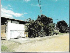 LOTE 1262