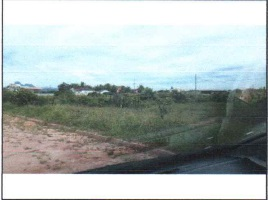 LOTE 1323